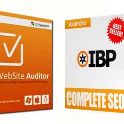 websiteauditor vs ibp